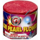 Wholesale Fireworks 48 Shot Color Pearl Flower Case 80/1