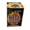 Wholesale Fireworks Mass Explosion Case 16/1
