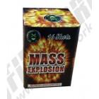 Wholesale Fireworks Mass Explosion Case 16/1