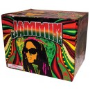 Wholesale Fireworks Jammin' Case 4/1