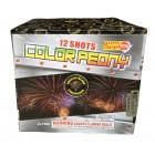 Color Peony