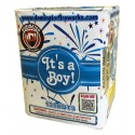 Wholesale Fireworks It's a Boy! (All Blue Gender Reveal Fireworks) Case 12/1