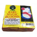 Baby Magic Blooms Brick 48/12