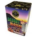 Desert Blossom