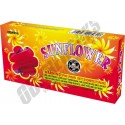 Sunflower Planes 12pk