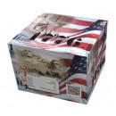 Wholesale Fireworks 1776 Case 4/1