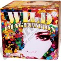 Wholesale Fireworks Wild Imagination Case 4/1