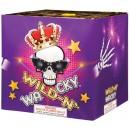Wholesale Fireworks Wild N Wacky Case 4/1