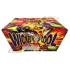 Wholesale Fireworks Wicked Cool Case 4/1