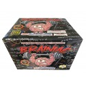 Wholesale Fireworks Brainiac 4/1 Case