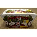 Wholesale Fireworks Papparozzi Case 4/1