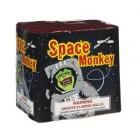 Space Monkeys 25 shots